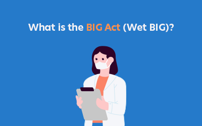 What is the BIG Act?