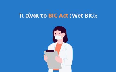 Τι είναι το BIG Act (Wet BIG);